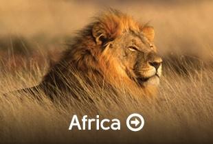 Afrika & Orient