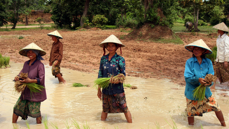 Reisebericht Vietnam