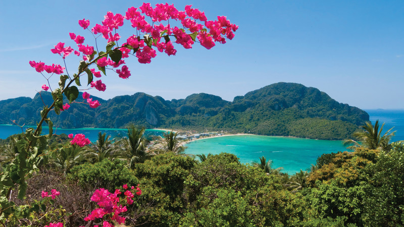 Intrepid Travel-thailand_koh-phi-phi-don_pink-bougainvillea
