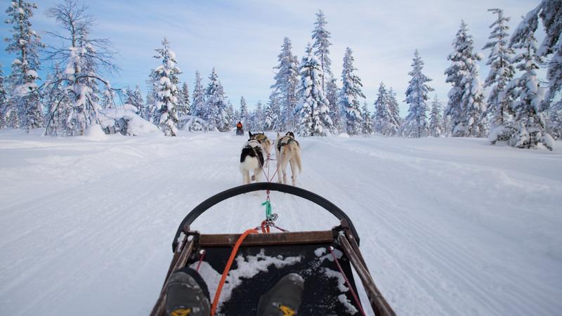 Europa-Finnland-Lappland-Hundeschlitten